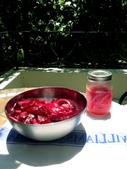 Beet Salad with a side of Pickled Onions