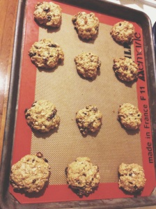 The Oatmeal Raisin Cookies